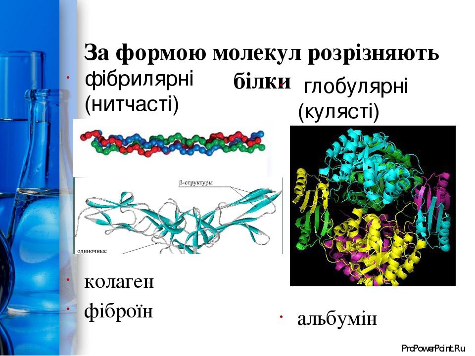 За формою молекул розрізняють білки фібрилярні (нитчасті) колаген фіброїн глобулярні (кулясті) альбумін ProPowerPoint.Ru