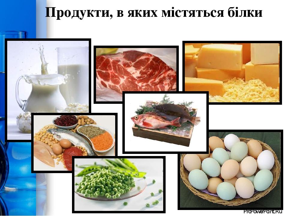 Продукти, в яких містяться білки ProPowerPoint.Ru