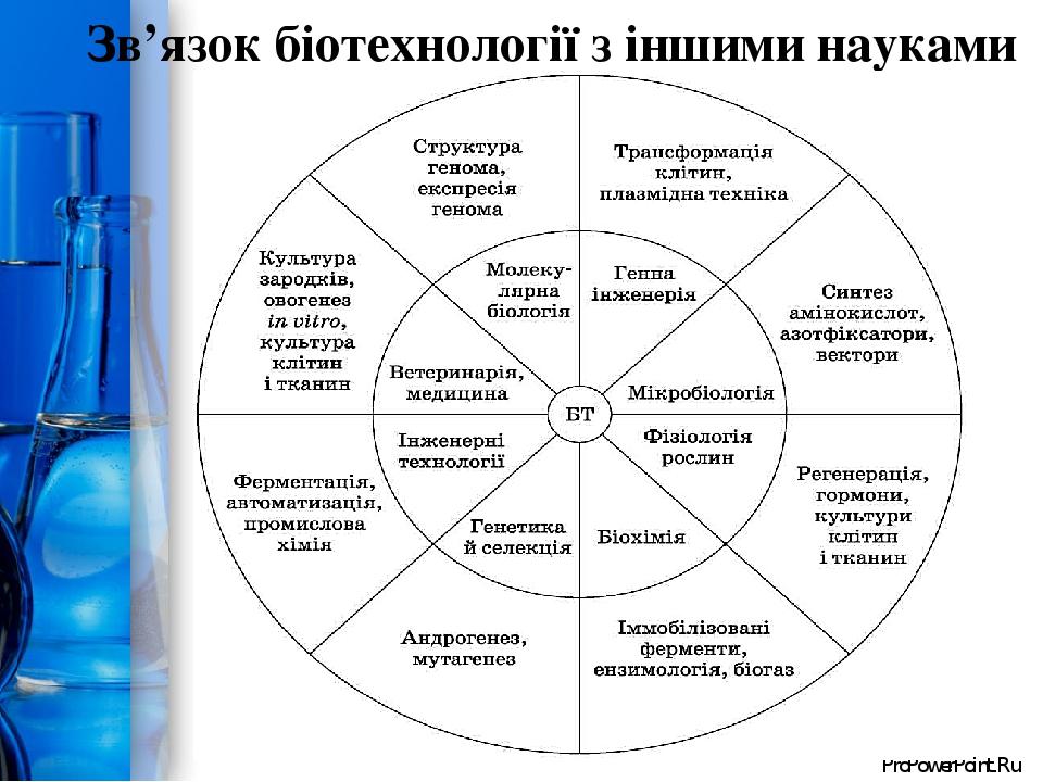 Зв'язок біотехнології з іншими науками ProPowerPoint.Ru