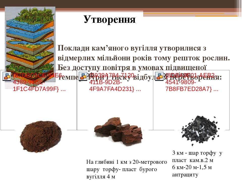 Поклади кам'яного вугілля утворилися з відмерлих мільйони років тому решток рослин. Без доступу повітря в умовах підвищеної температури і тиску від...