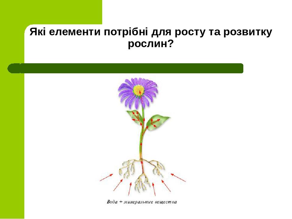 Які елементи потрібні для росту та розвитку рослин?