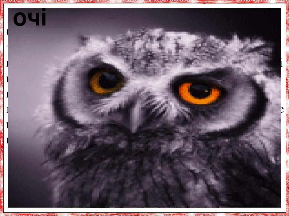 Сови мають гострий зір. Очі дуже великі і дивля-ться прямо вперед. Вони пристосовані для полю-вання в умовах слабкого освітлення, в темноті.Очі гли...