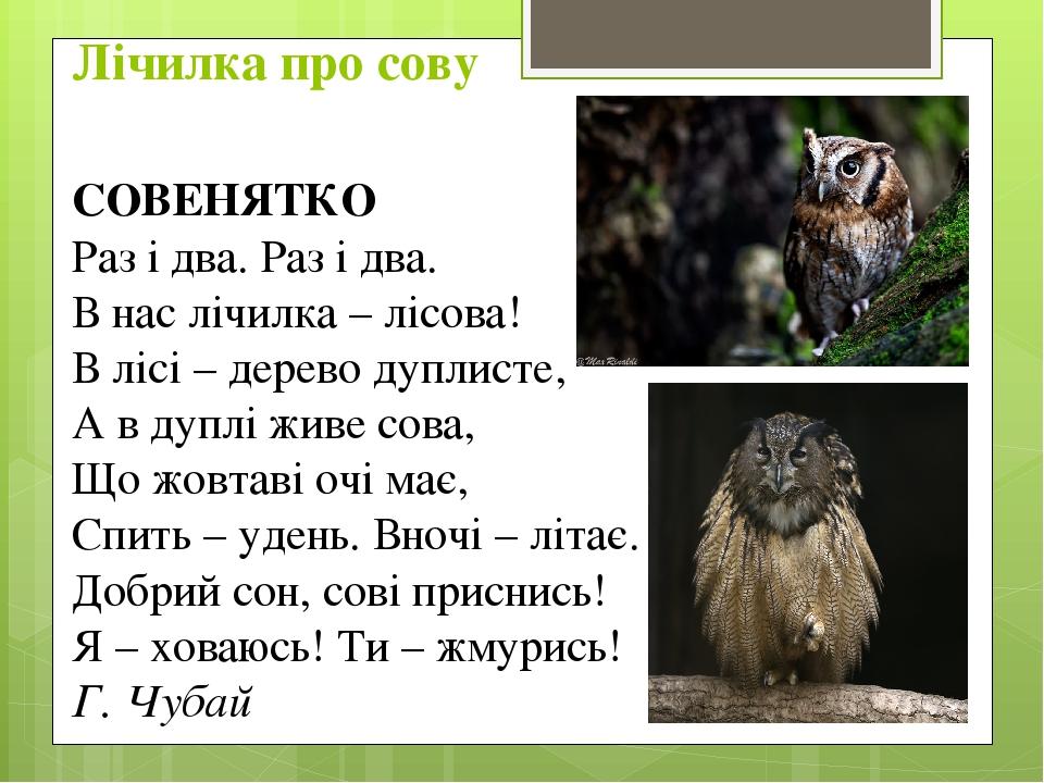СОВЕНЯТКО Раз і два. Раз і два. В нас лічилка – лісова! В лісі – дерево дуплисте, А в дуплі живе сова, Що жовтаві очі має, Спить – удень. Вночі – л...
