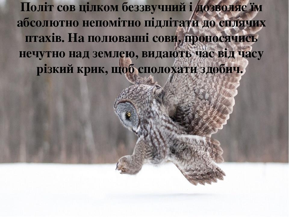 Політ сов цілком беззвучний і дозволяє їм абсолютно непомітно підлітати до сплячих птахів. На полюванні сови, проносячись нечутно над землею, видаю...