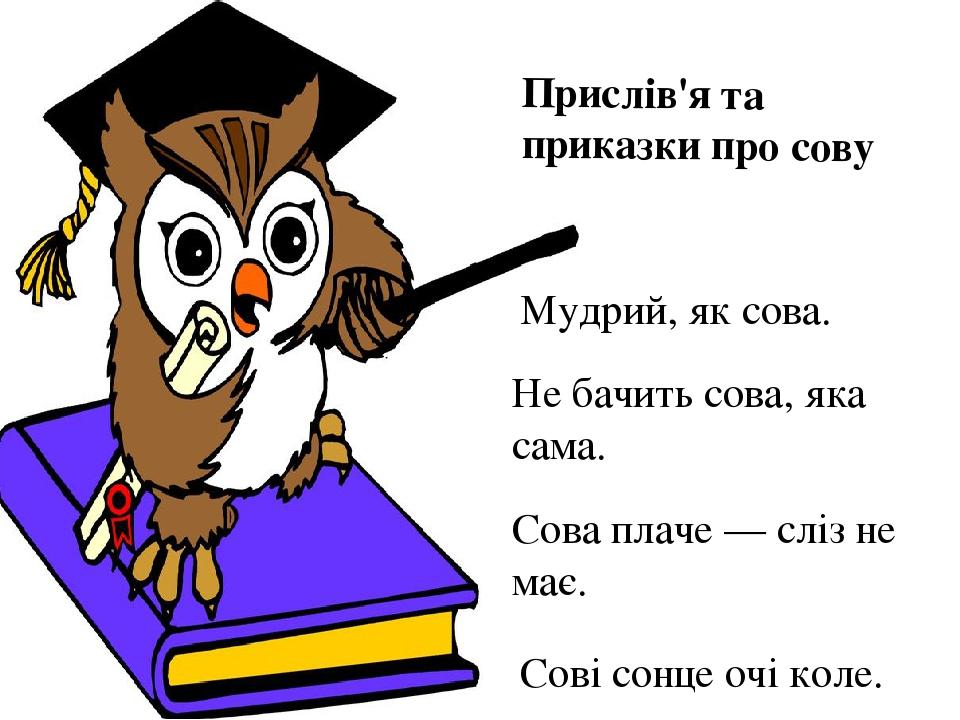 Прислів'я та приказки про сову Мудрий, як сова. Не бачить сова, яка сама. Сова плаче — сліз не має. Сові сонце очі коле.