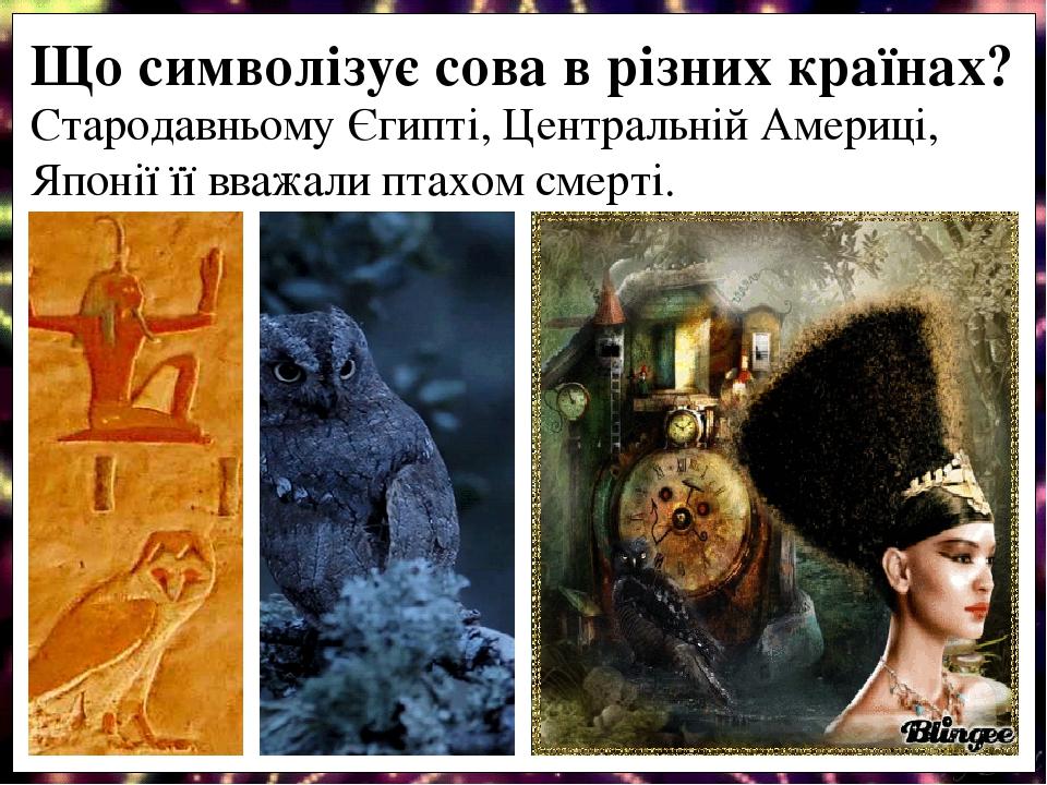 Стародавньому Єгипті, Центральній Америці, Японії її вважали птахом смерті. Що символізує сова в різних країнах?
