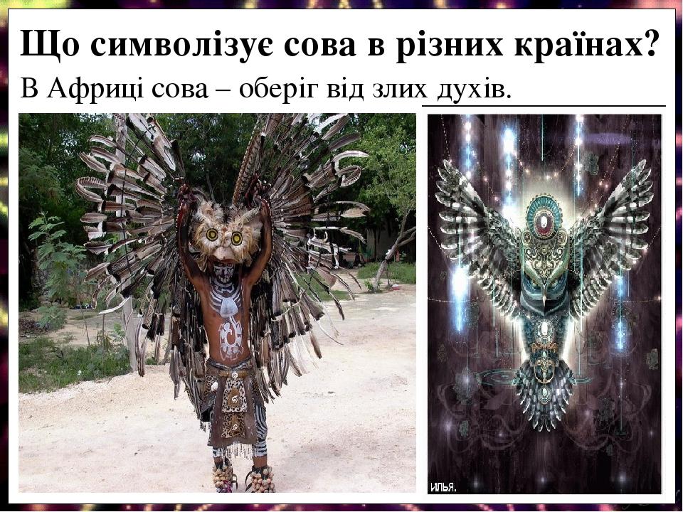 В Африці сова – оберіг від злих духів. Що символізує сова в різних країнах?