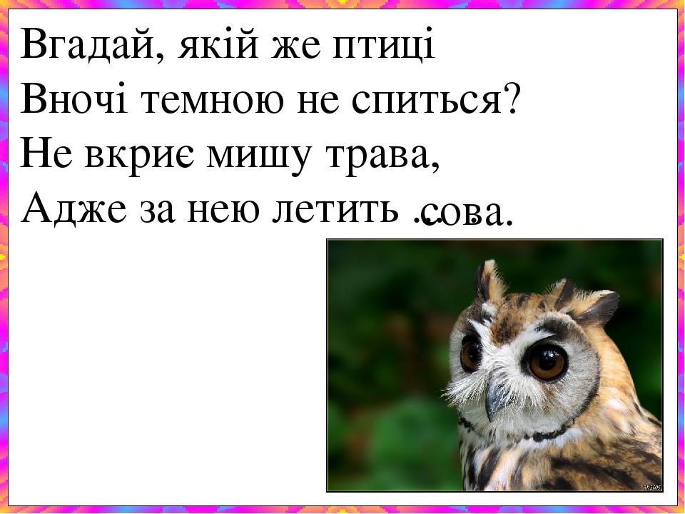 Вгадай, якій же птиці Вночі темною не спиться? Не вкриє мишу трава, Адже за нею летить ... . сова.