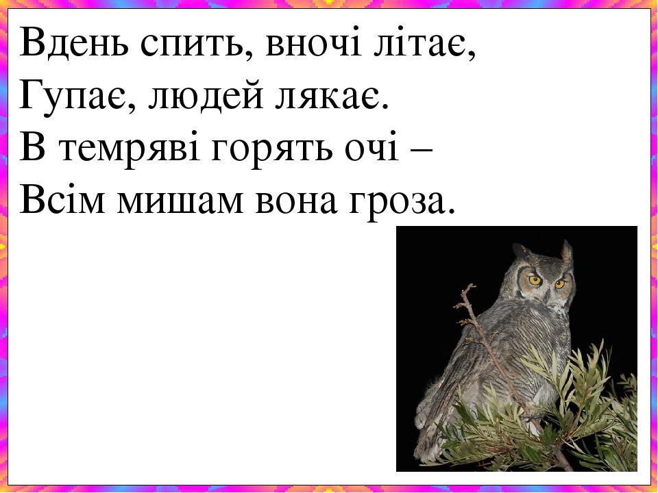Вдень спить, вночі літає, Гупає, людей лякає. В темряві горять очі – Всім мишам вона гроза.