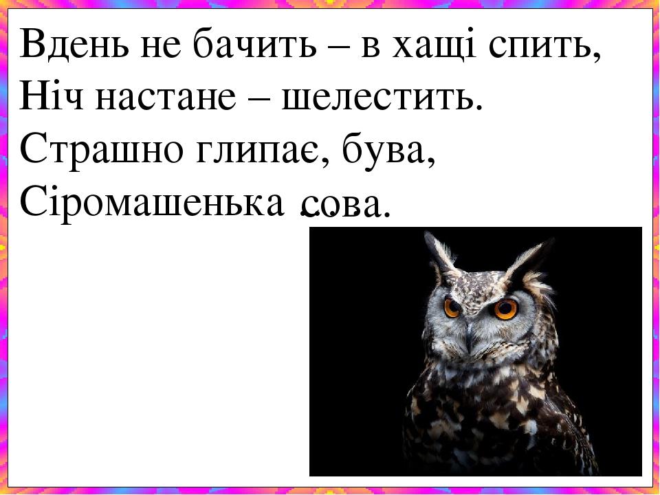 Вдень не бачить – в хащі спить, Ніч настане – шелестить. Страшно глипає, бува, Сіромашенька … . сова.