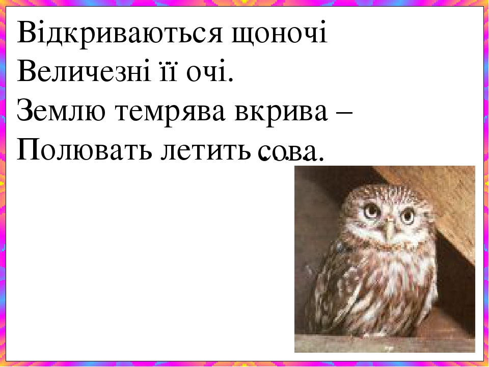 Відкриваються щоночі Величезні її очі. Землю темрява вкрива – Полювать летить … . сова.