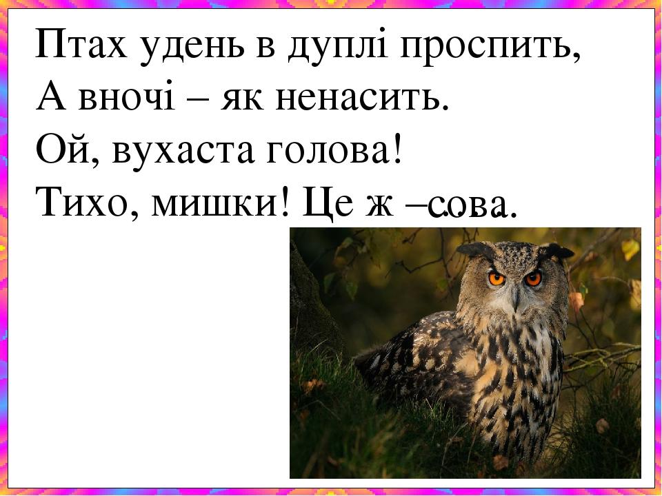 Птах удень в дуплі проспить, А вночі – як ненасить. Ой, вухаста голова! Тихо, мишки! Це ж – … . сова.