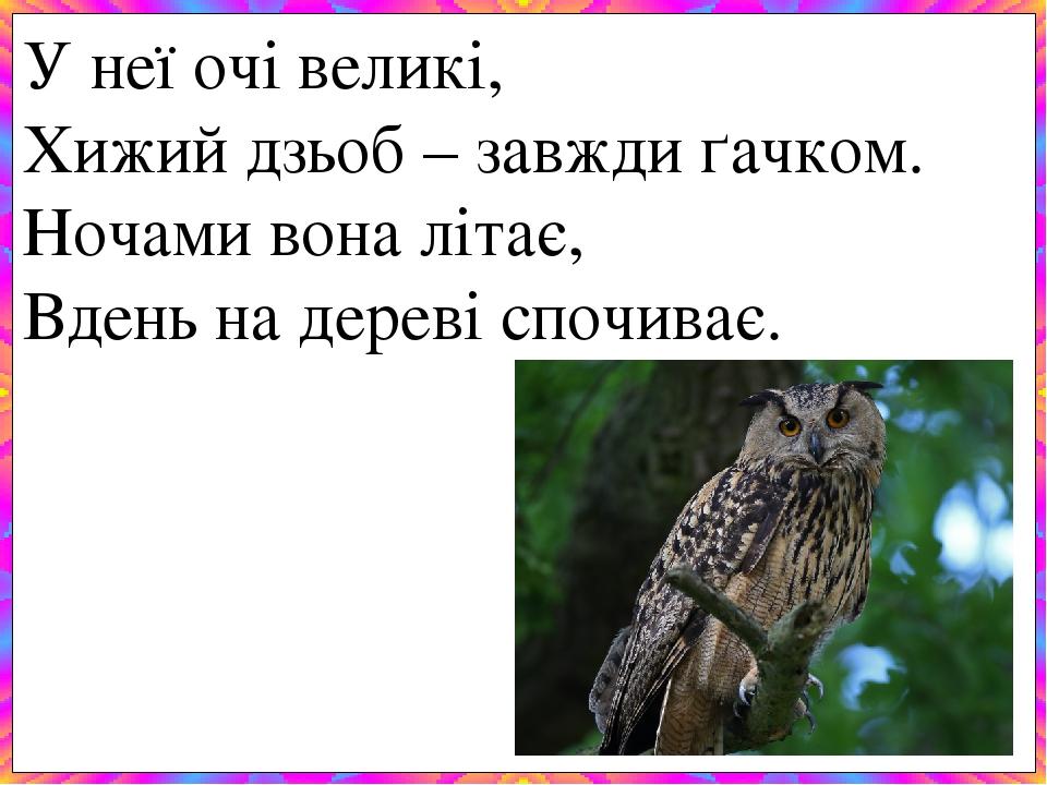У неї очі великі, Хижий дзьоб – завжди ґачком. Ночами вона літає, Вдень на дереві спочиває.