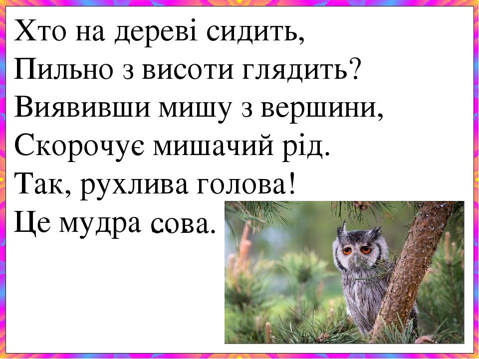 Хто на дереві сидить, Пильно з висоти глядить? Виявивши мишу з вершини, Скорочує мишачий рід. Так, рухлива голова! Це мудра ... . сова.