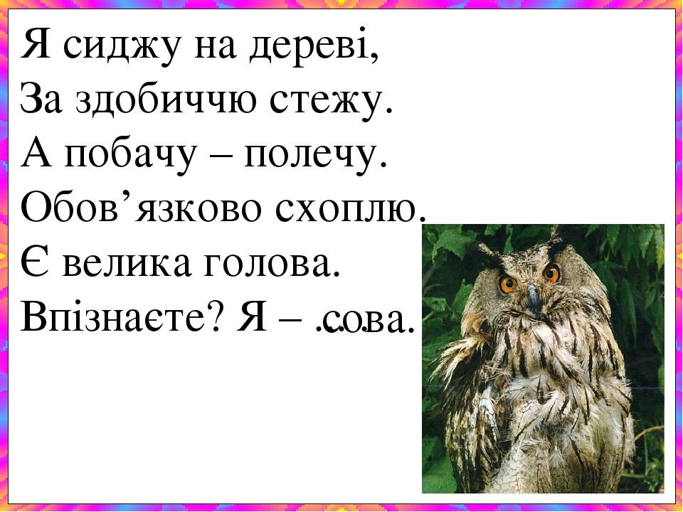Я сиджу на дереві, За здобиччю стежу. А побачу – полечу. Обов'язково схоплю. Є велика голова. Впізнаєте? Я – ... . сова.