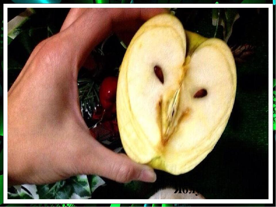 Яблуко в розрізі