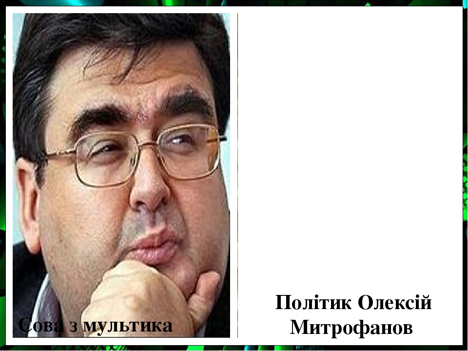 Сова з мультика Політик Олексій Митрофанов