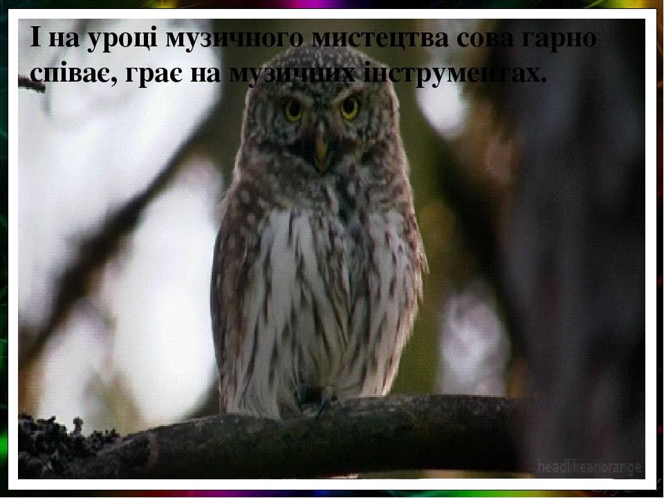 І на уроці музичного мистецтва сова гарно співає, грає на музичних інструментах.