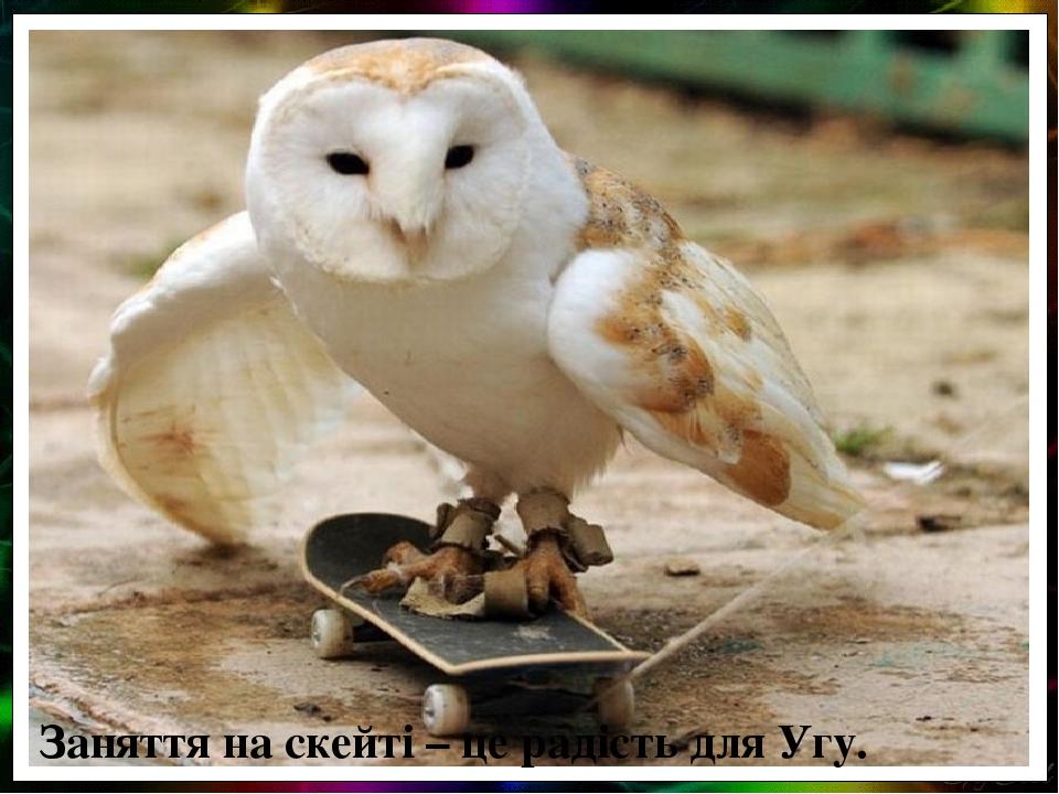 Заняття на скейті – це радість для Угу.