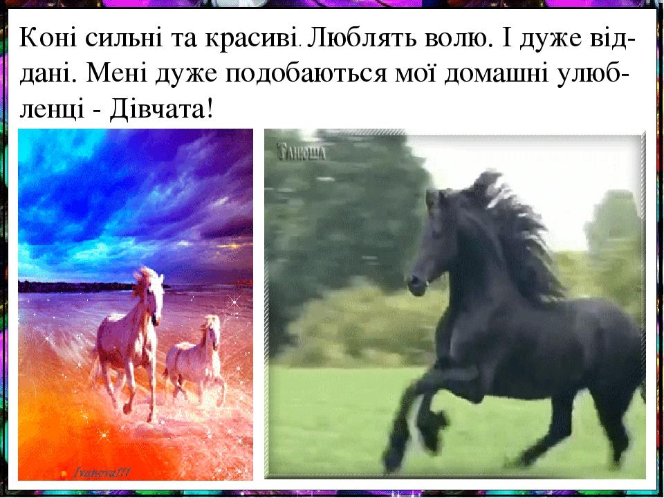 Коні сильні та красиві. Люблять волю. І дуже від-дані. Мені дуже подобаються мої домашні улюб-ленці - Дівчата!