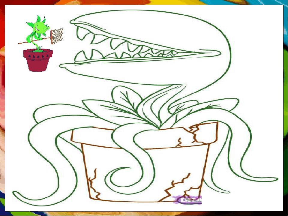 Цветок мухоловка рисунок карандашом прикольный, открытки самое интересное