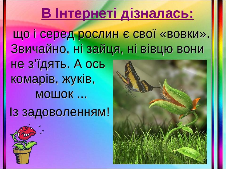 В Інтернеті дізналась: що і серед рослин є свої «вовки». Звичайно, ні зайця, ні вівцю вони не з'їдять. А ось комарів, жуків, мошок ... Із задоволен...