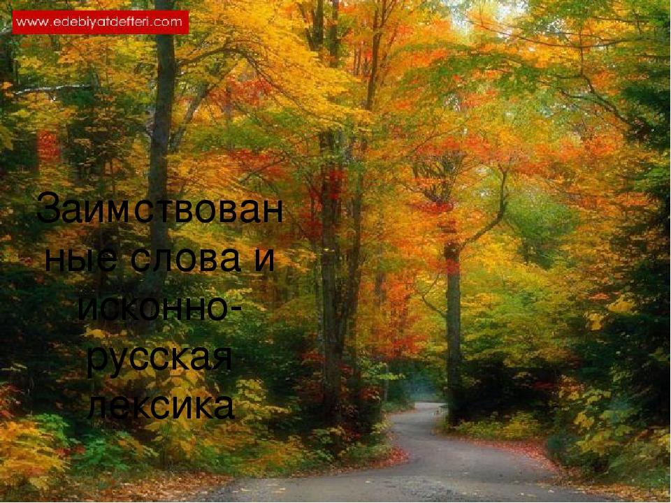 Заимствованные слова и исконно-русская лексика