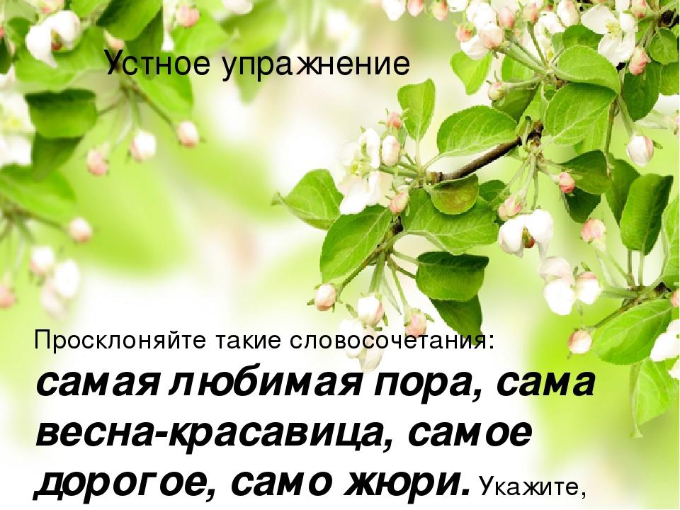 Устное упражнение Просклоняйте такие словосочетания: самая любимая пора, сама весна-красавица, самое дорогое, само жюри. Укажите, куда падает ударе...