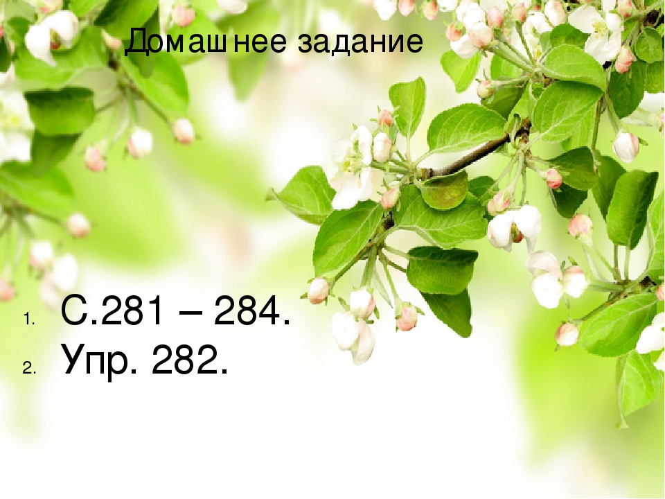 Домашнее задание С.281 – 284. Упр. 282.