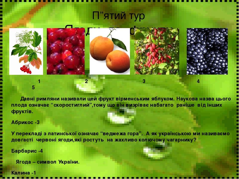 """П""""ятий тур Ягоди та фрукти 1 2 3 4 5 Давні римляни називали цей фрукт вірменським яблуком. Наукова назва цього плода означає """"скоростиглий"""",тому що..."""