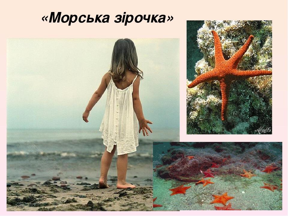 «Морська зірочка»
