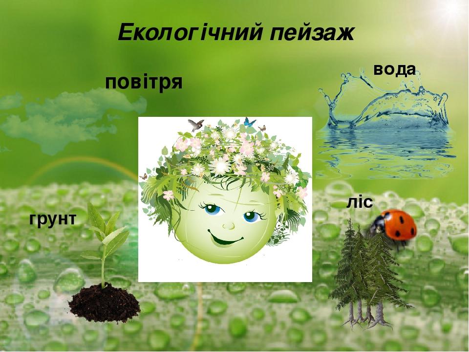 Екологічний пейзаж повітря вода грунт ліс