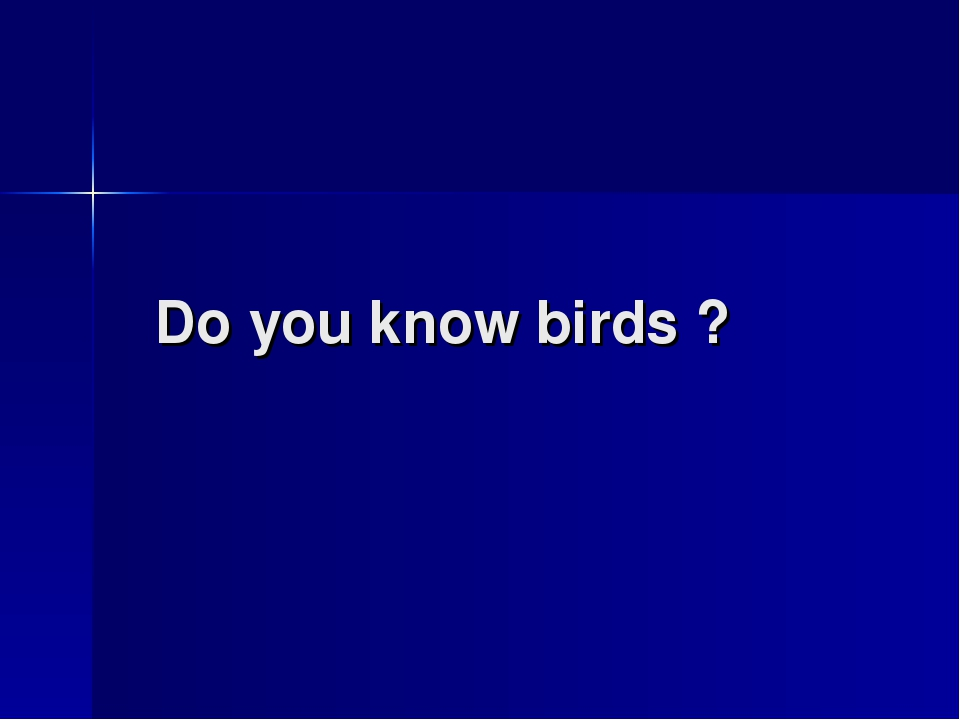 Do you know birds ?