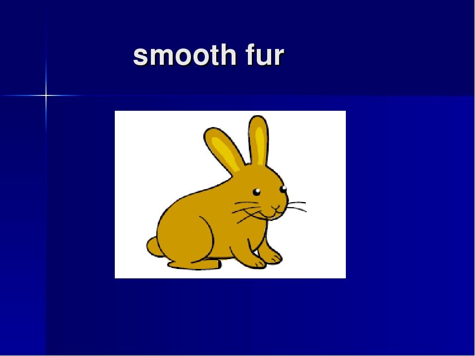 smooth fur