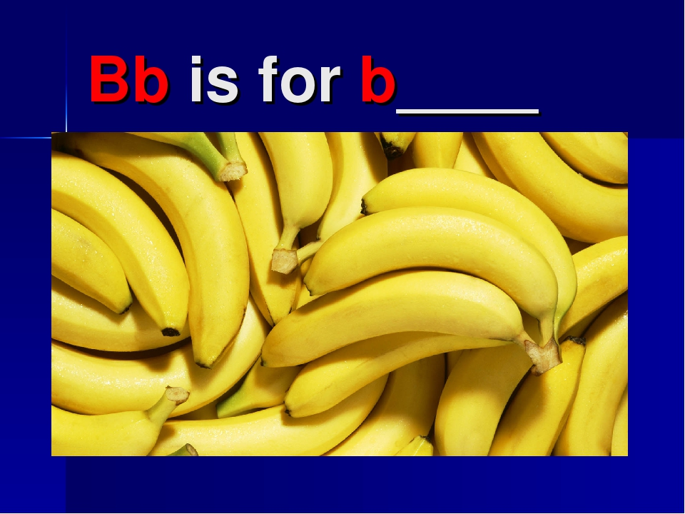 Bb is for b____