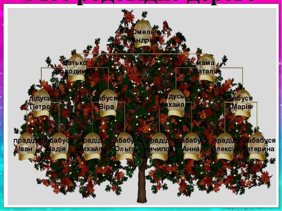 Я – Омельчук Андрій батько Володимир мама Наталія дідусь Петро бабуся Віра дідусь Михайло бабуся Марія прадід Іван прабабуся Надія прадід Ничипор п...