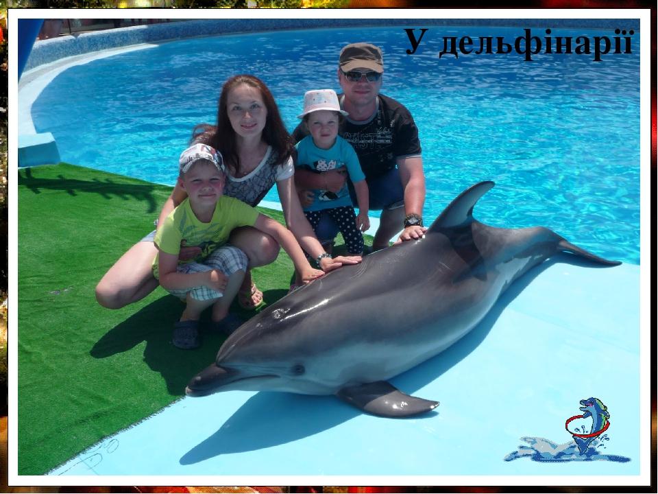 У дельфінарії