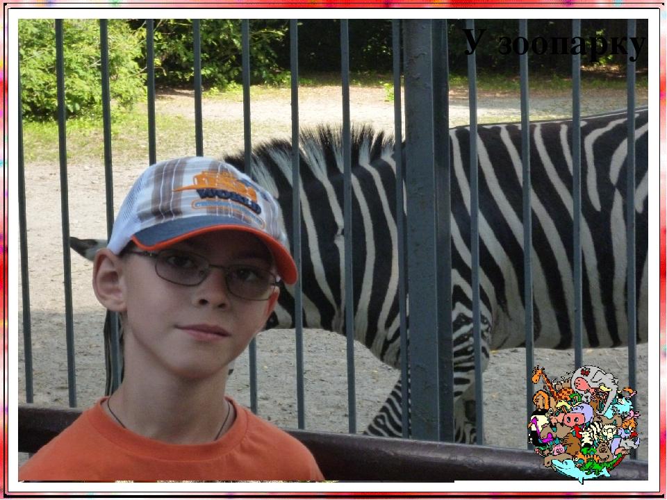 У зоопарку