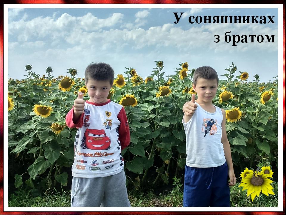У соняшниках з братом