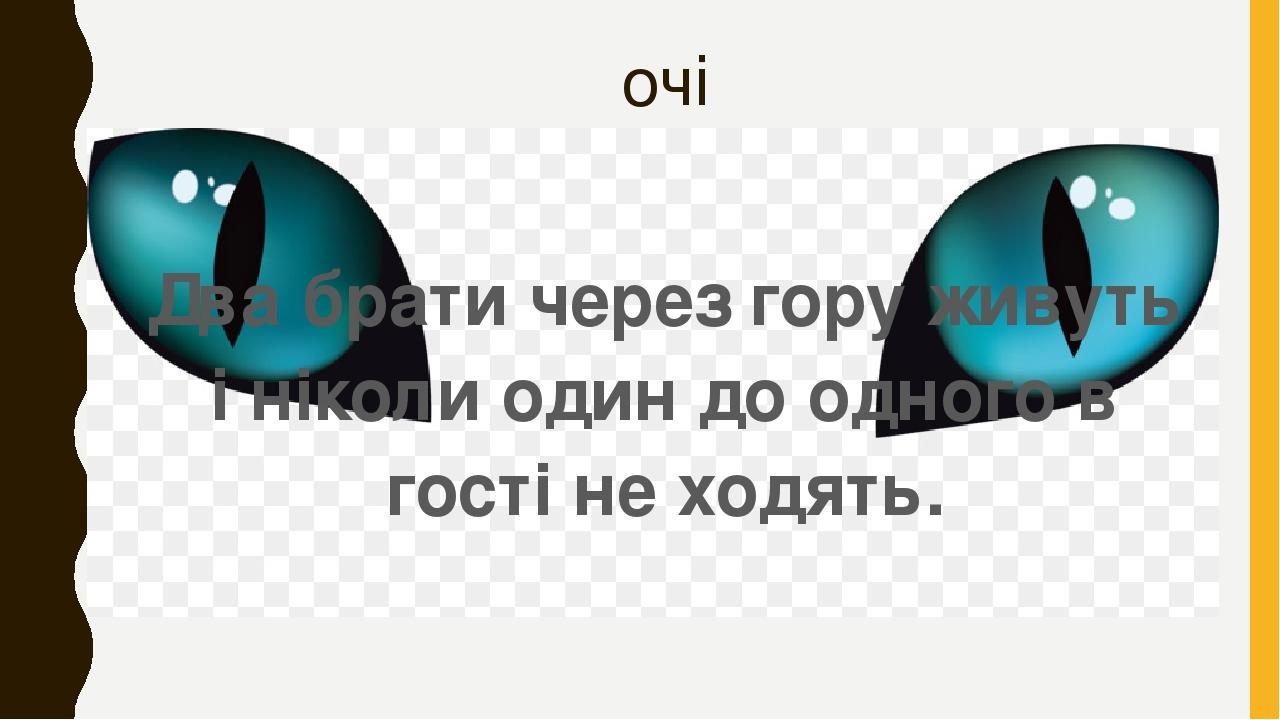 очі Два брати через гору живуть і ніколи один до одного в гості не ходять.