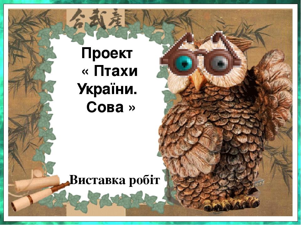 Проект « Птахи України. Сова » Виставка робіт