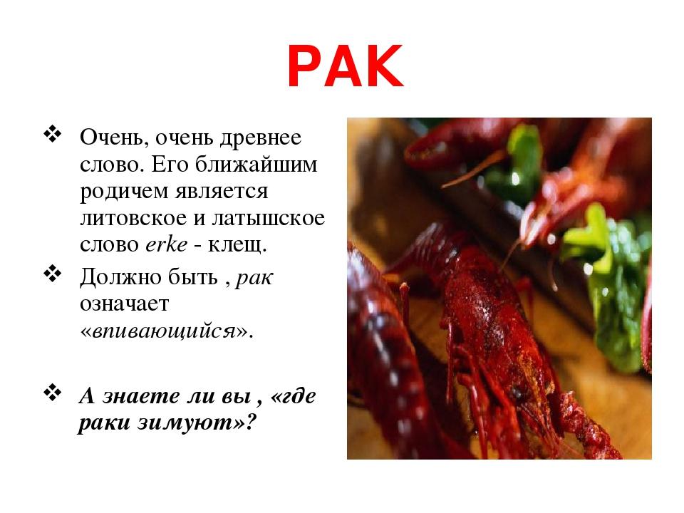 РАК Очень, очень древнее слово. Его ближайшим родичем является литовское и латышское слово erke - клещ. Должно быть , рак означает «впивающийся». А...