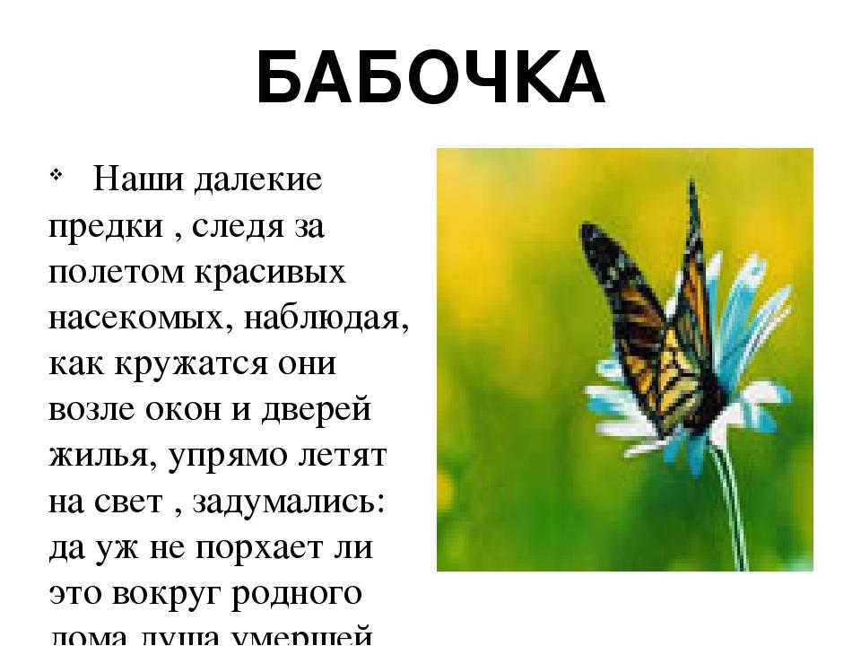 БАБОЧКА  Наши далекие предки , следя за полетом красивых насекомых, наблюдая, как кружатся они возле окон и дверей жилья, упрямо летят на свет , з...