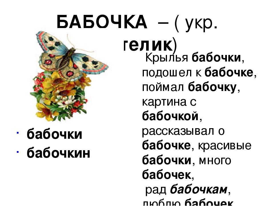БАБОЧКА – ( укр. метелик)       бабочки  бабочкин