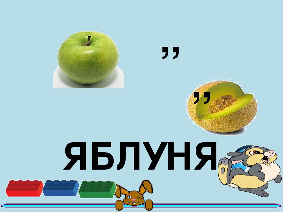 ,, ,, ЯБЛУНЯ