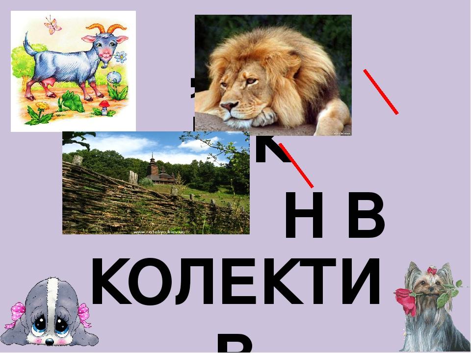 ,, В К Н В КОЛЕКТИВ