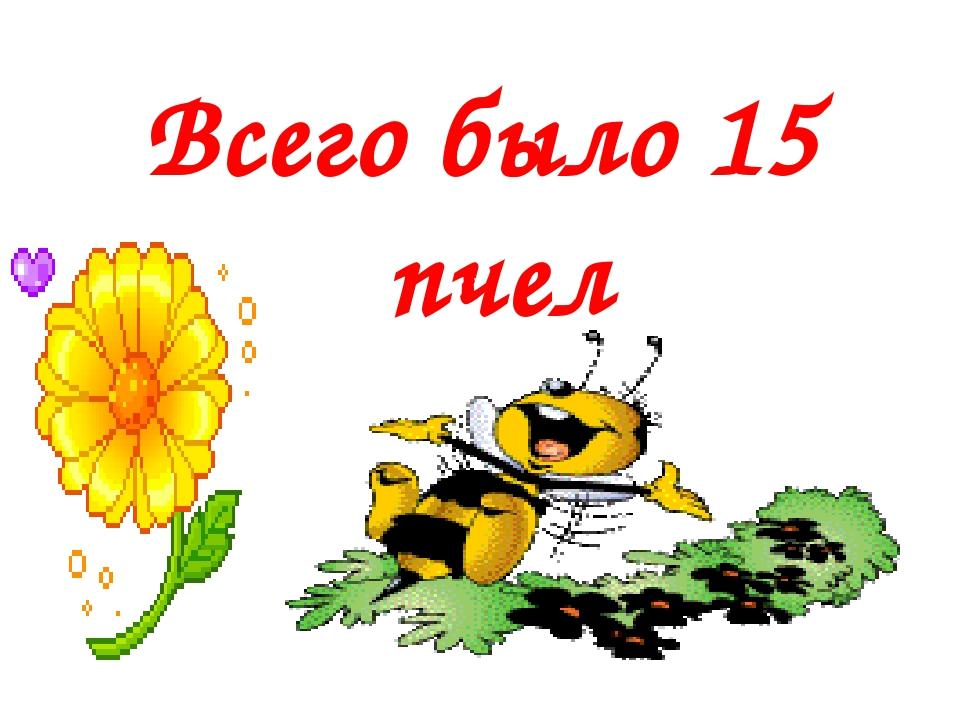Всего было 15 пчел