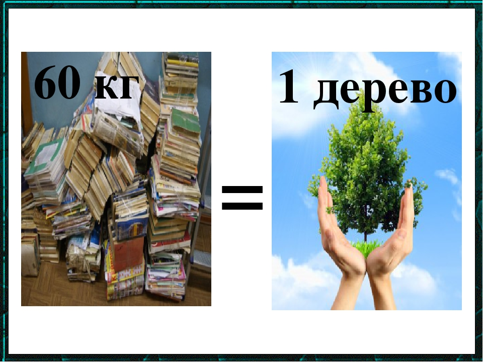 = 60 кг 1 дерево