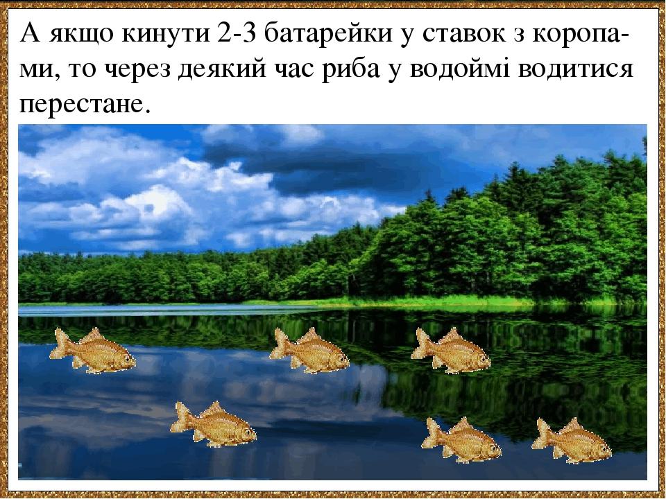 А якщо кинути 2-3 батарейки у ставок з коропа-ми, то через деякий час риба у водоймі водитися перестане.