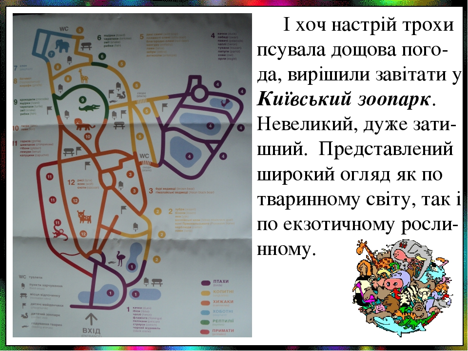 І хоч настрій трохи псувала дощова пого-да, вирішили завітати у Київський зоопарк. Невеликий, дуже зати-шний. Представлений широкий огляд як по тва...